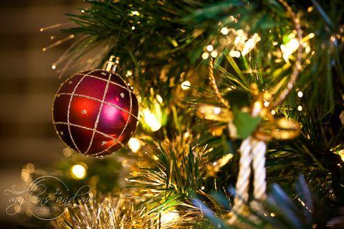 ChristmasDay-NYE-3