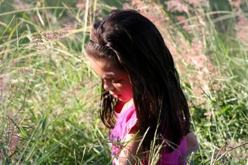 Grass3_3
